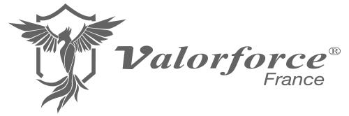 Valorforce